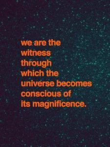 104 UNIV ART we are the witness