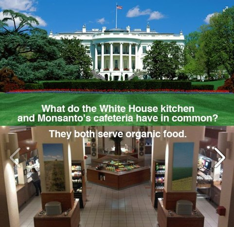 NUTRITION white house and monsanto serves organic