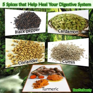 HEALTH 5 spices heal digestion