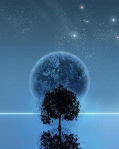 ART moon tree