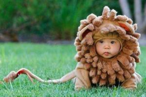 PHOTO baby lion costumed kid