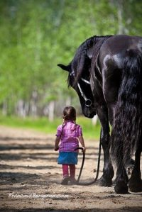 KIDS HORSE WALK