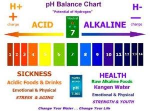 pH Balance Chart acid vs alkaline