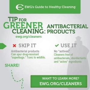 eco green choices